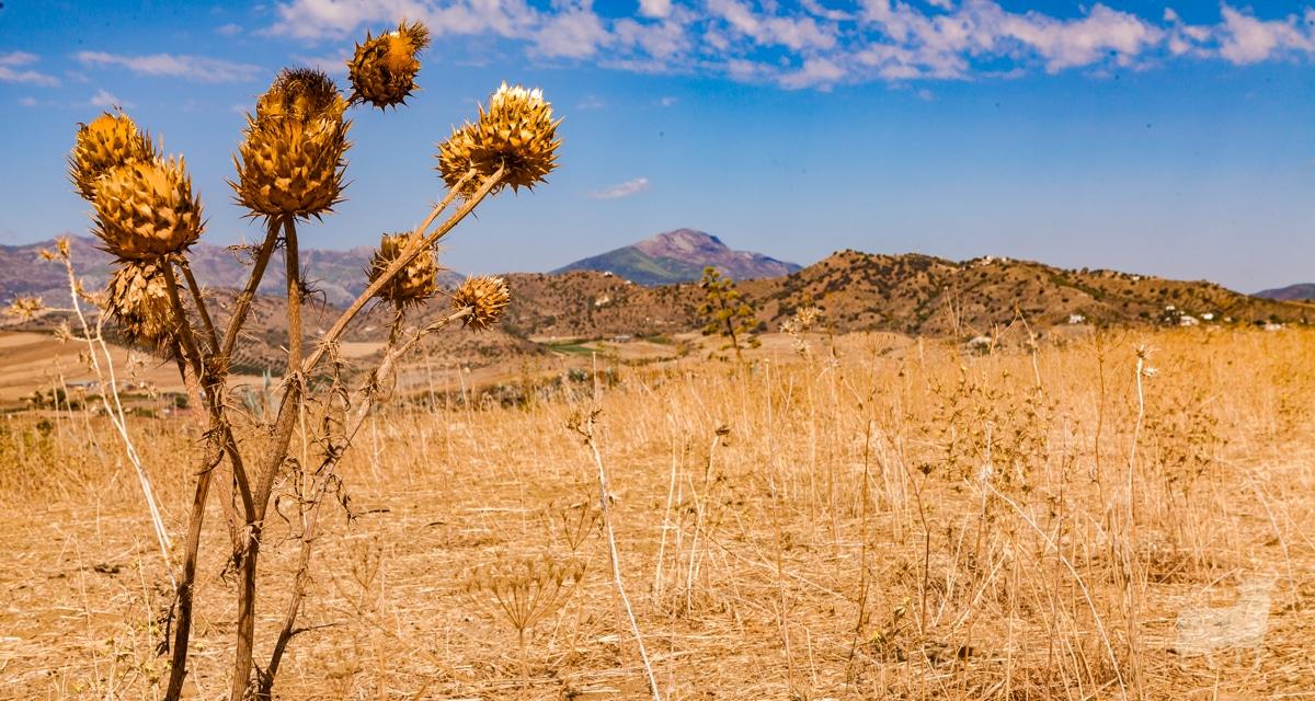 Spain desert film location Malaga province