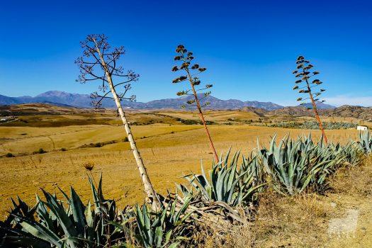 Desert film location in Spain, Almeria, Malaga, Granada