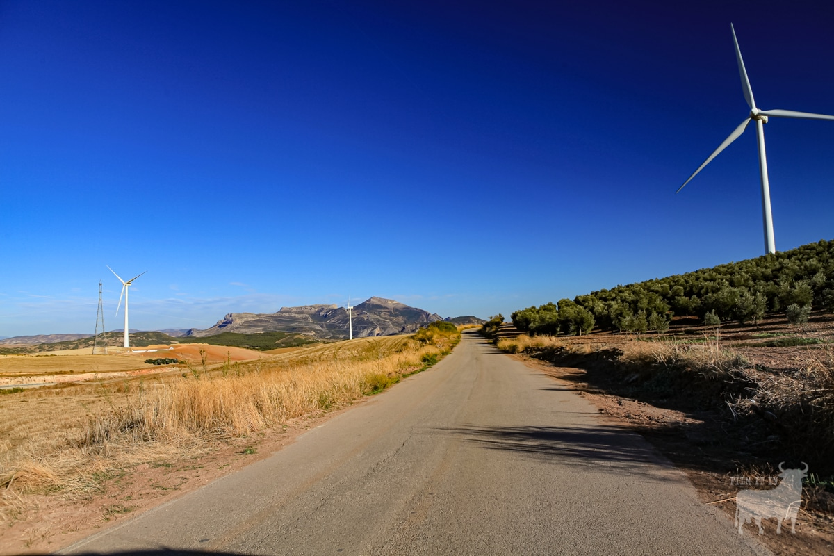 Spain film location road country wind farm